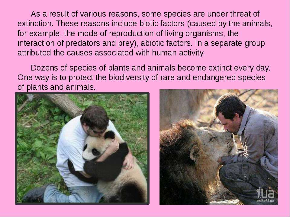 An animal which is under threat of extinction essay
