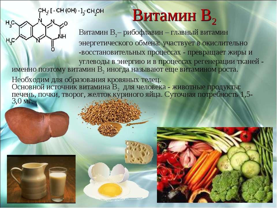 Витамин В2 Витамин В2– рибофлавин – главный витамин энергетического обмена: у...