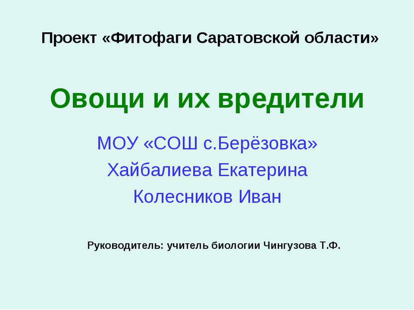 Овощи и их вредители МОУ «СОШ с.Берёзовка» Хайбалиева Екатерина Колесников Ив...