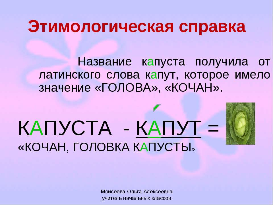 Этимологическая справка Название капуста получила от латинского слова капут, ...