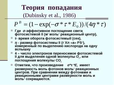 Теория попадания (Dubinsky et al., 1986) Где σ-эффективное поглощение света ф...