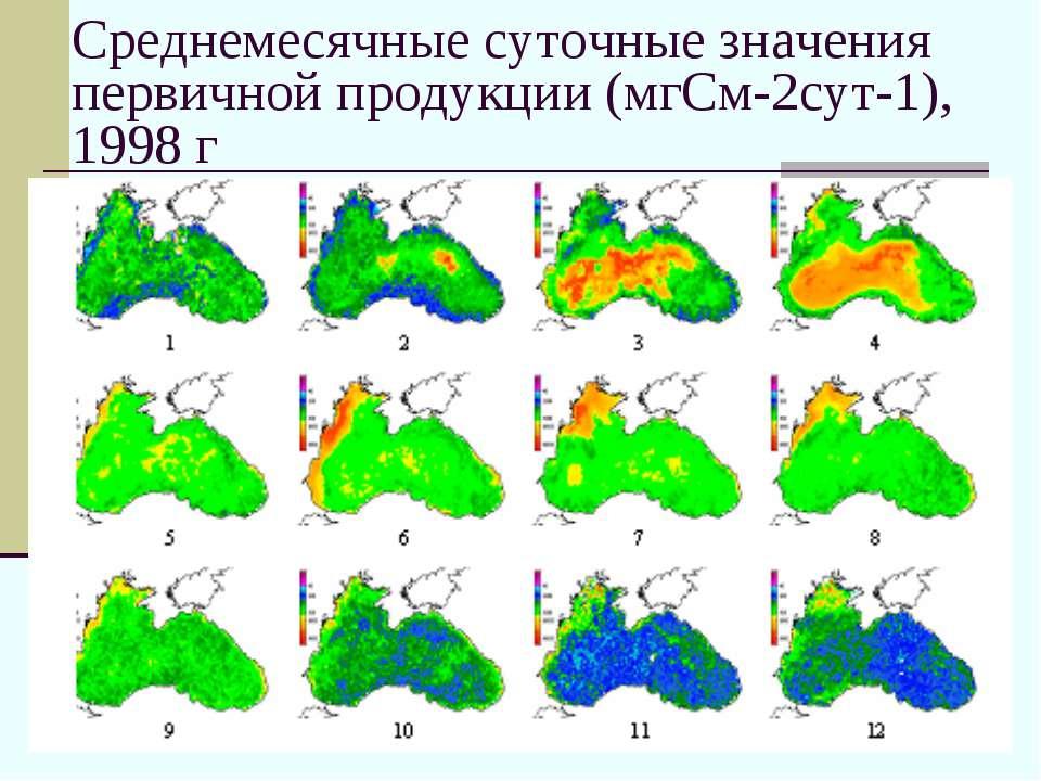 Среднемесячные суточные значения первичной продукции (мгСм-2сут-1), 1998 г