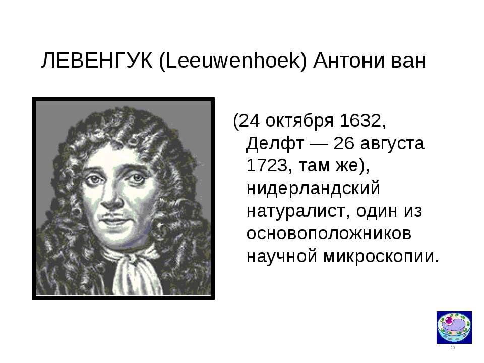 * ЛЕВЕНГУК (Leeuwenhoek) Антони ван (24 октября 1632, Делфт — 26 августа 1723...