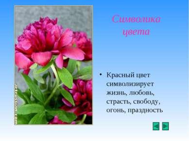 Символика цвета Красный цвет символизирует жизнь, любовь, страсть, свободу, о...