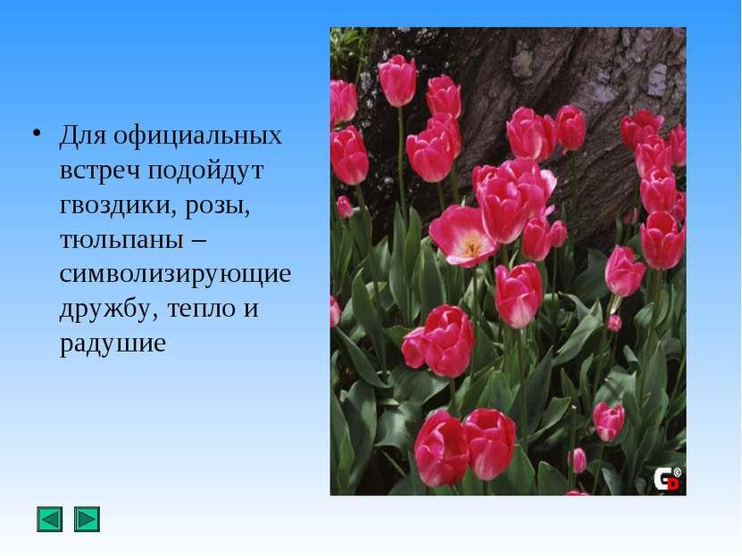 Для официальных встреч подойдут гвоздики, розы, тюльпаны –символизирующие дру...