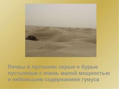 Почвы в пустынях серые и бурые пустынные с очень малой мощностью и небольшим ...