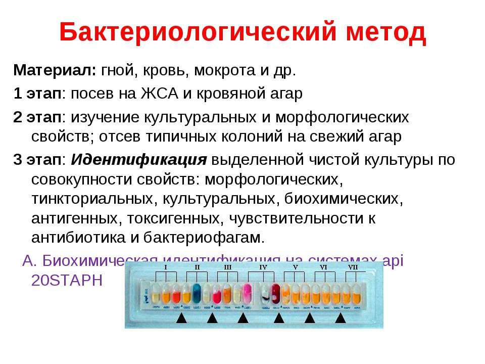 Бактериологический метод Материал: гной, кровь, мокрота и др. 1 этап: посев н...