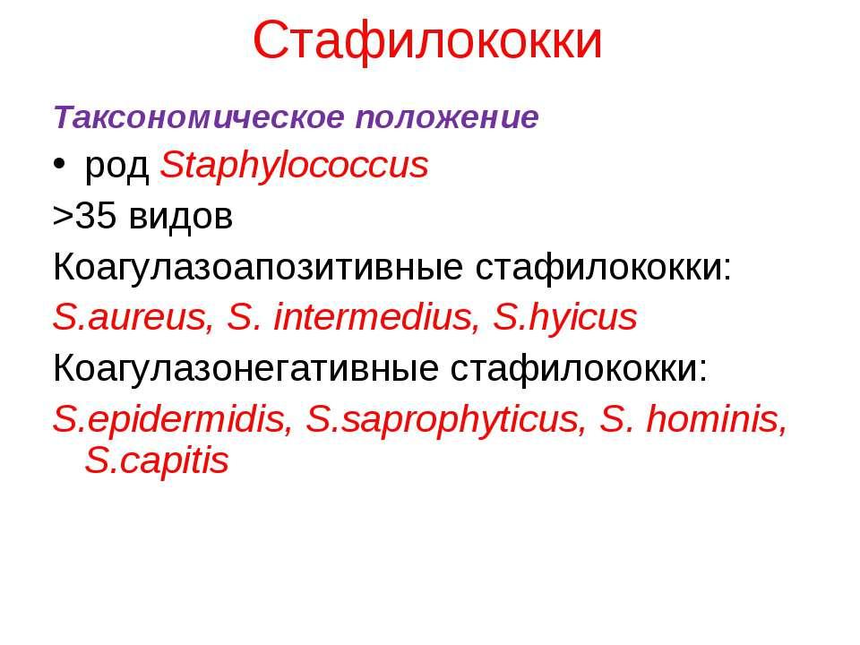 Стафилококки Таксономическое положение род Staphylococcus >35 видов Коагулазо...