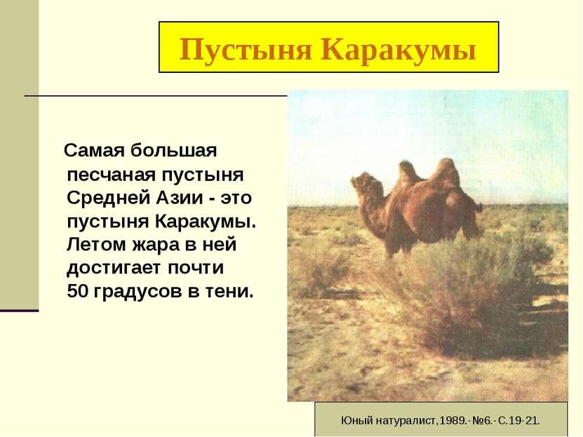Пустыня Каракумы Самая большая песчаная пустыня Средней Азии - это пустыня Ка...