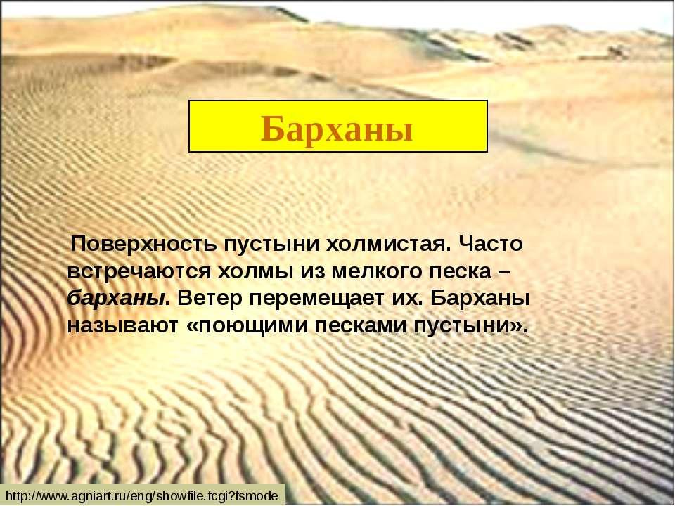 Барханы Поверхность пустыни холмистая. Часто встречаются холмы из мелкого пес...