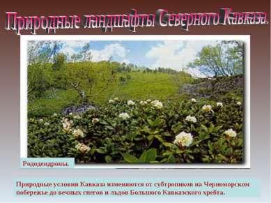 Вид на Эльбрус Поляна перед перевалом Кват. Природные условия Кавказа изменяю...