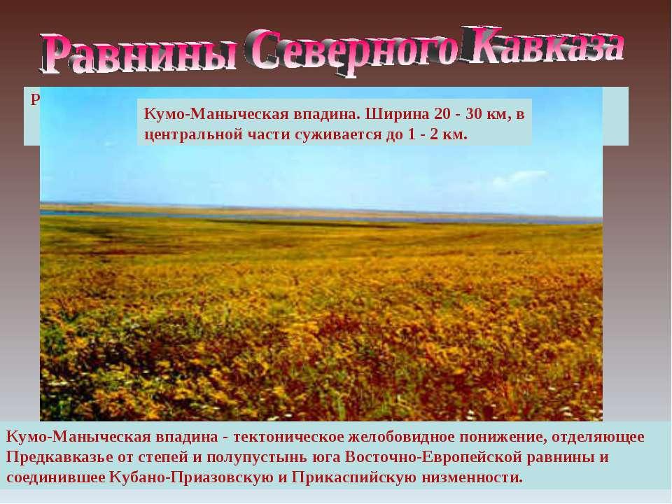 Равнинная (степная) зона Северного Кавказа занимает большую часть территории ...