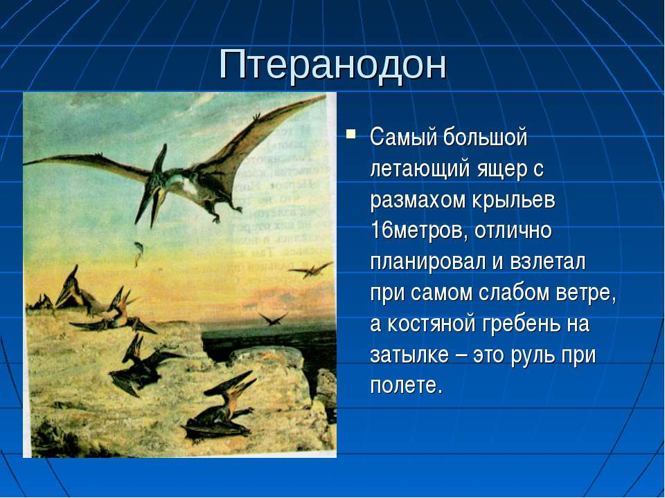 Птеранодон Самый большой летающий ящер с размахом крыльев 16метров, отлично п...