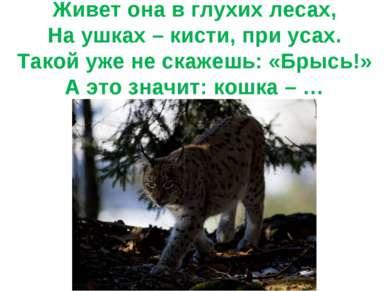 Живет она в глухих лесах, На ушках – кисти, при усах. Такой уже не скажешь: «...