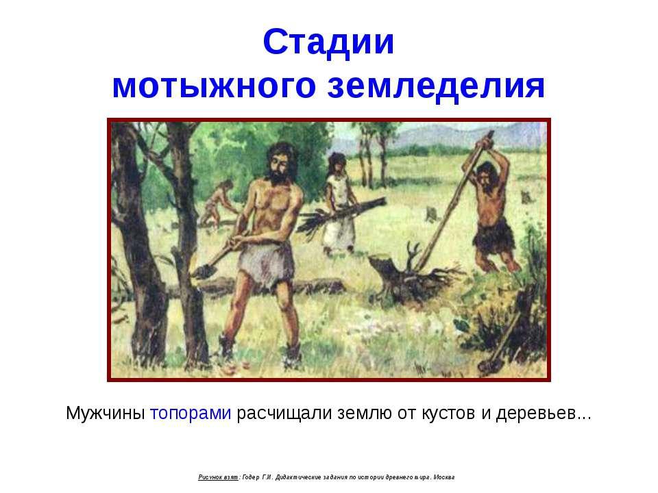 Стадии мотыжного земледелия Мужчины топорами расчищали землю от кустов и дере...