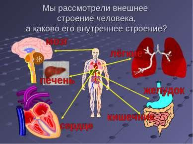 Мы рассмотрели внешнее строение человека, а каково его внутреннее строение?
