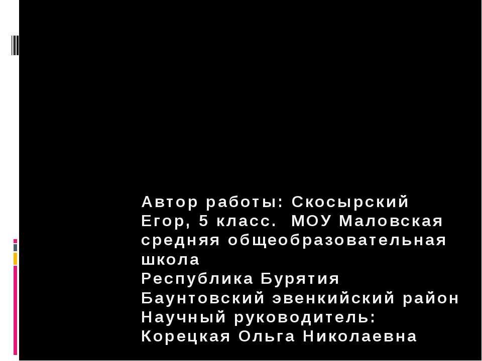Интерактивные игры на уроках Литературы. Автор работы: Скосырский Егор, 5 кла...