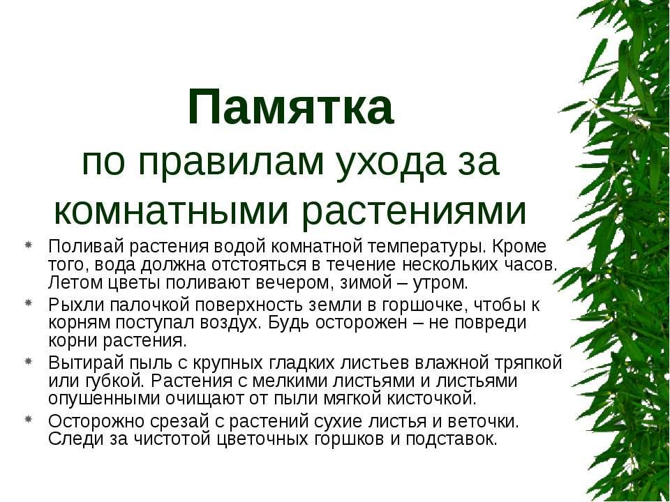 Памятка по правилам ухода за комнатными растениями Поливай растения водой ком...