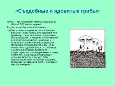«Съедобные и ядовитые грибы» Грибы - это обширная группа организмов (более 10...