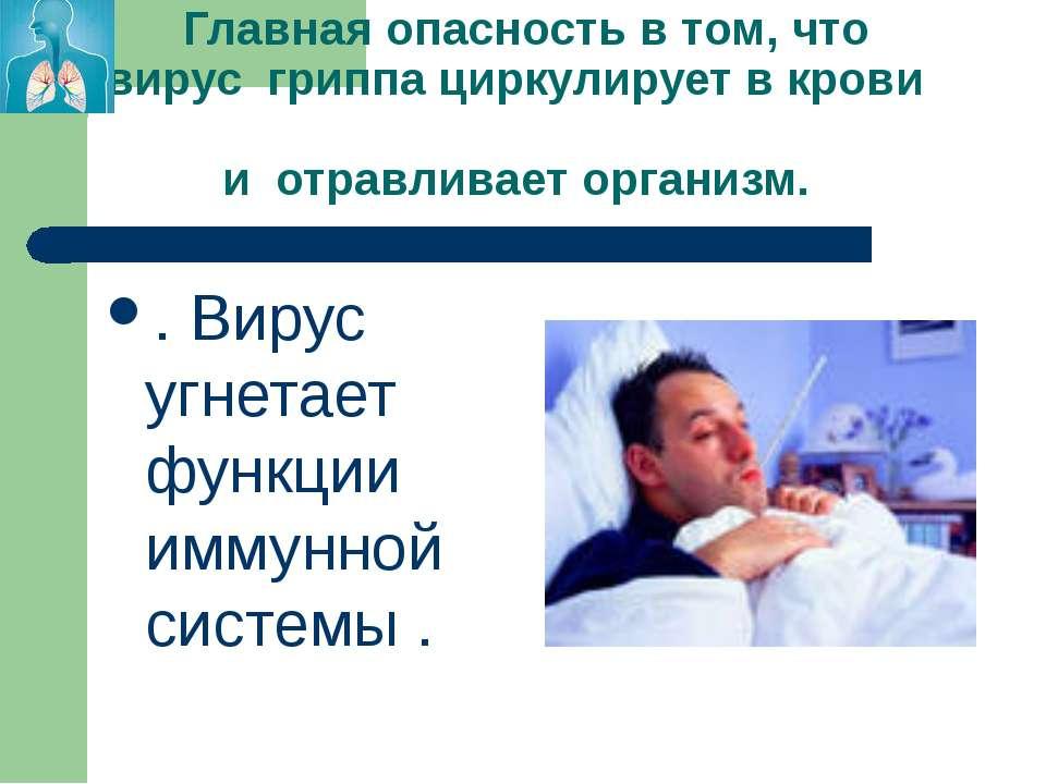 Главная опасность в том, что вирус гриппа циркулирует в крови и отравливает о...