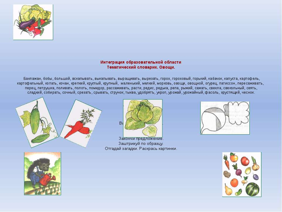 Интеграция образовательной области Тематический словарик. Овощи. Баклажан, бо...