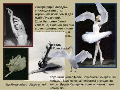 «Умирающий лебедь» впоследствии стал коронным номером и для Майи Плисецкой. Е...