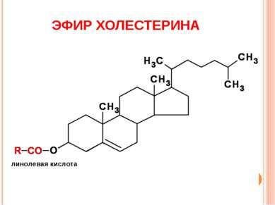 ЭФИР ХОЛЕСТЕРИНА линолевая кислота