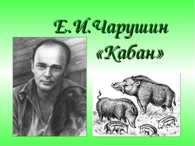 Е. чарушин презентация