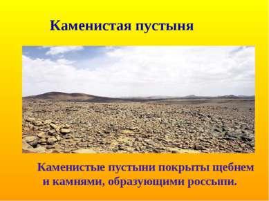 Каменистая пустыня Каменистые пустыни покрыты щебнем и камнями, образующими р...