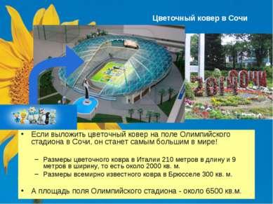 Цветочный ковер в Сочи Если выложить цветочный ковер на поле Олимпийского ста...