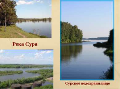 Река Сура Сурское водохранилище