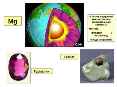 Mg Турмалин Гранат В состав внутренней мантии Земли в основном входят элемент...