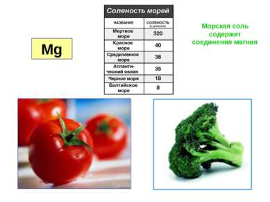 Mg Морская соль содержит соединения магния