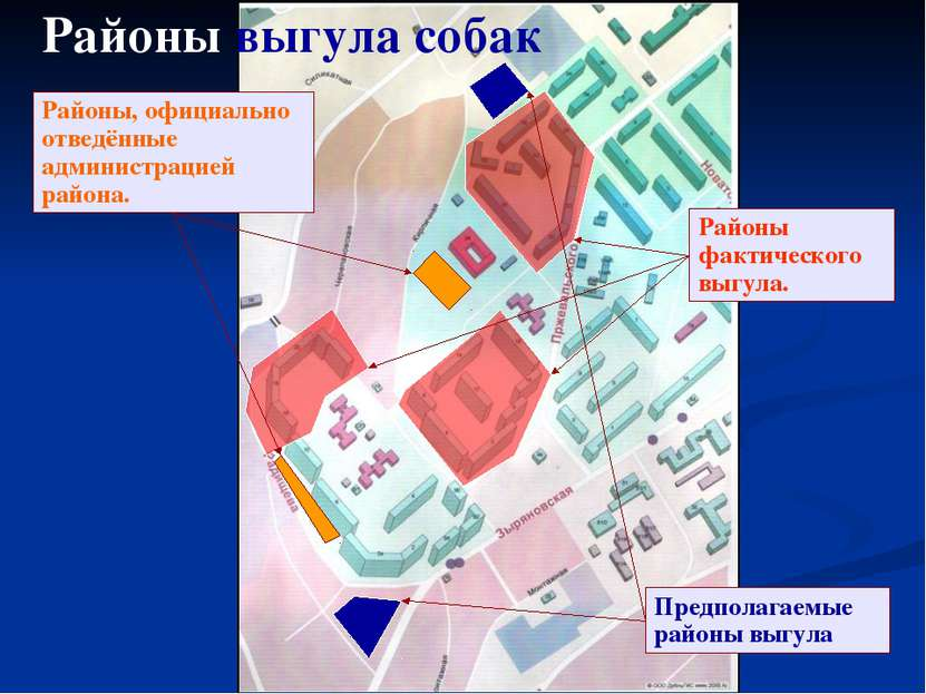 Предполагаемые районы выгула Районы, официально отведённые администрацией рай...