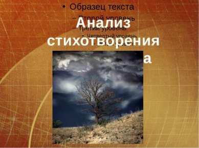 Анализ стихотворения А.С.Пушкина «Анчар»