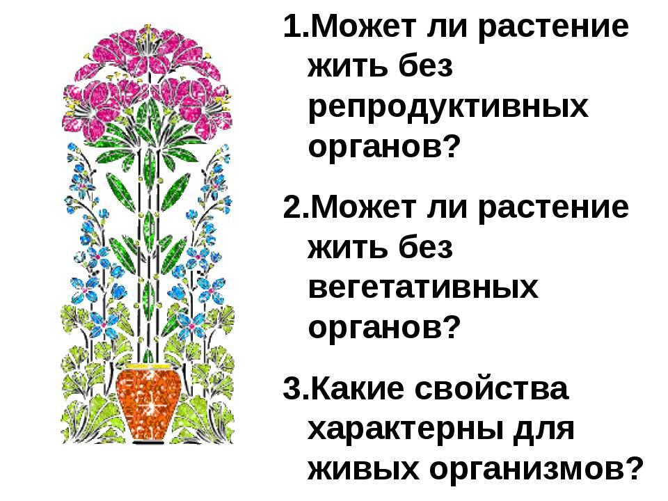 Может ли растение жить без репродуктивных органов? Может ли растение жить без...