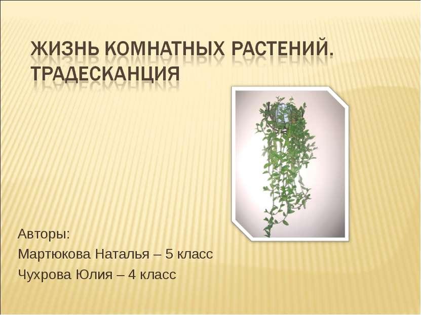 Авторы: Мартюкова Наталья – 5 класс Чухрова Юлия – 4 класс
