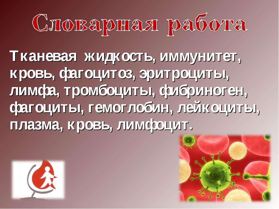 Тканевая жидкость, иммунитет, кровь, фагоцитоз, эритроциты, лимфа, тромбоциты...