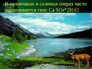 В солончаках и соленых озерах часто накапливается гипс Ca SO4*2H2O