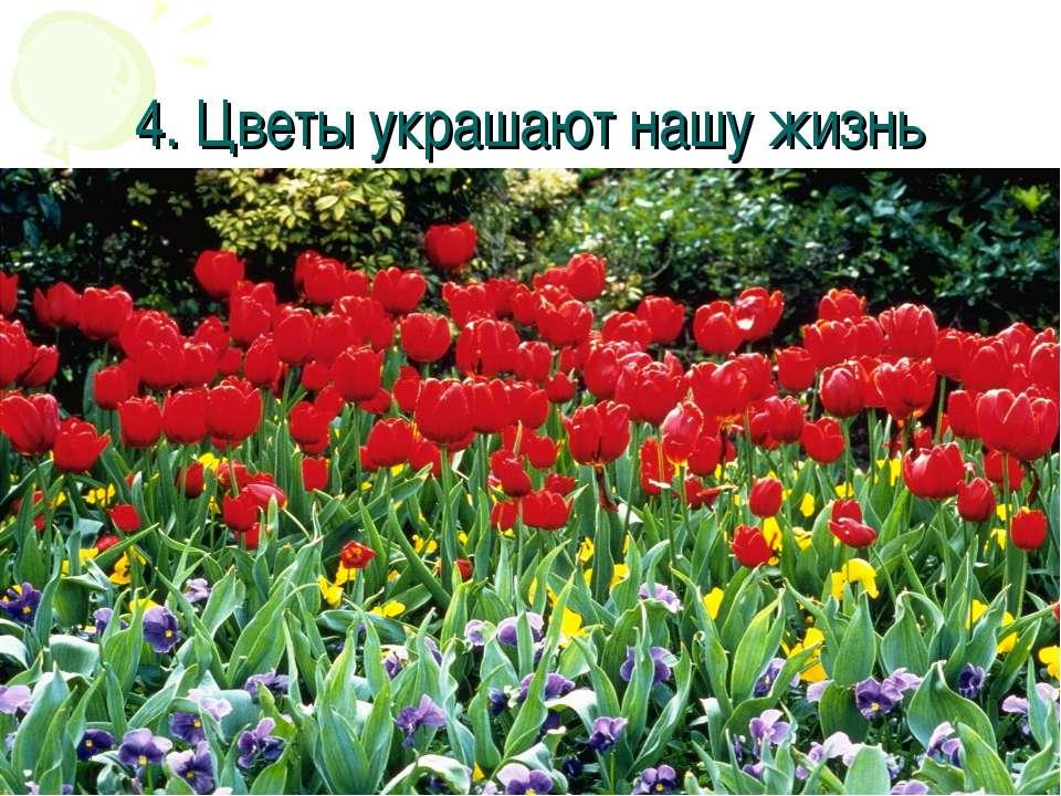 4. Цветы украшают нашу жизнь