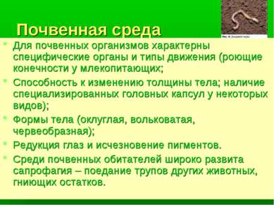 Почвенная среда Для почвенных организмов характерны специфические органы и ти...