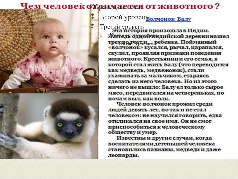 Создатаель: учитель МОУСОШ №4 - Спиридонова Н.Н.