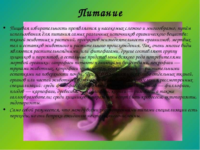 Питание Пищевая избирательность проявляется у насекомых сложно и многообразно...