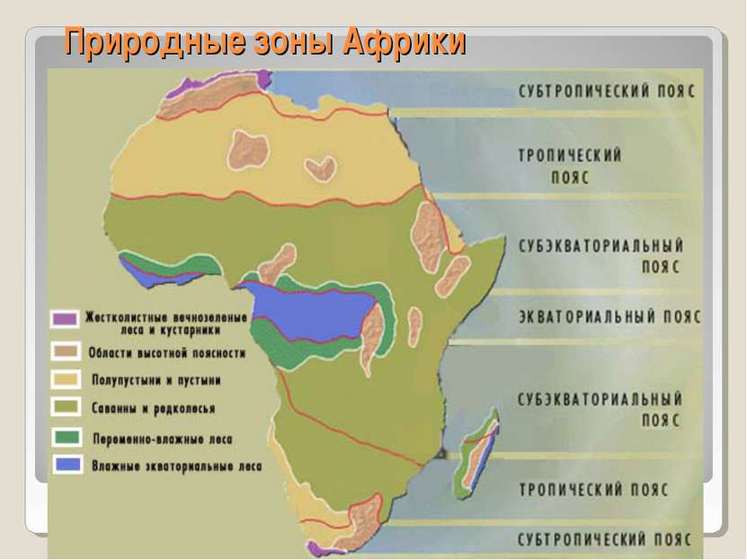 Природные зоны Африки