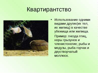 Квартирантство Использование одними видами других(их тел, их жилищ) в качеств...