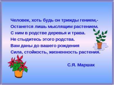 Человек, хоть будь он трижды гением,- Останется лишь мыслящим растением. С ни...