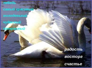 радость восторг счастье лебедь самый красивый молоденький чудесный прекрасный