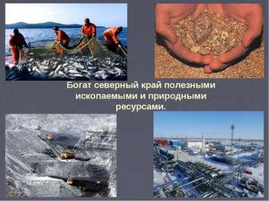 Богат северный край полезными ископаемыми и природными ресурсами.