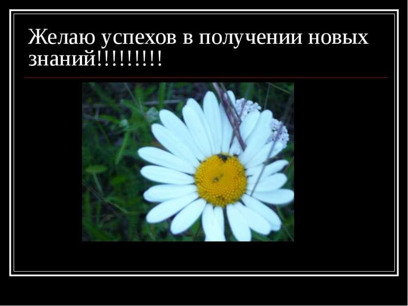 Желаю успехов в получении новых знаний!!!!!!!!!