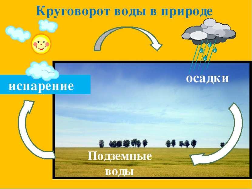 Круговорот воды в природе Подземные воды осадки испарение